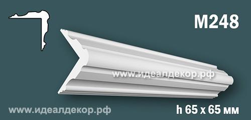 Продается m248 (гипсовый молдинг с гладким профилем угловой) по цене 451 руб.